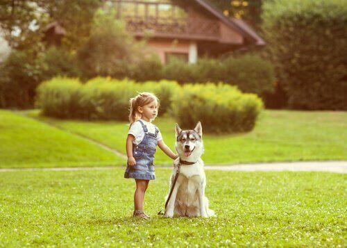 Menina pequena com cachorro