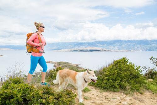 Fazer trilha com cachorro