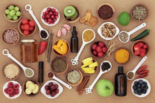 Benefícios da alimentação natural para animais de estimação