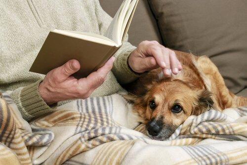 Senhor lendo livro e acariciando cachorro