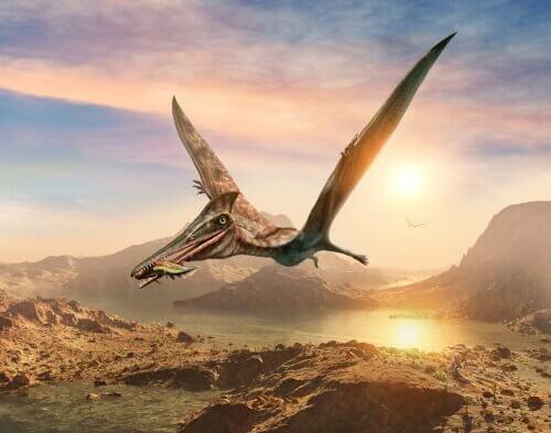 Pterossauro voando