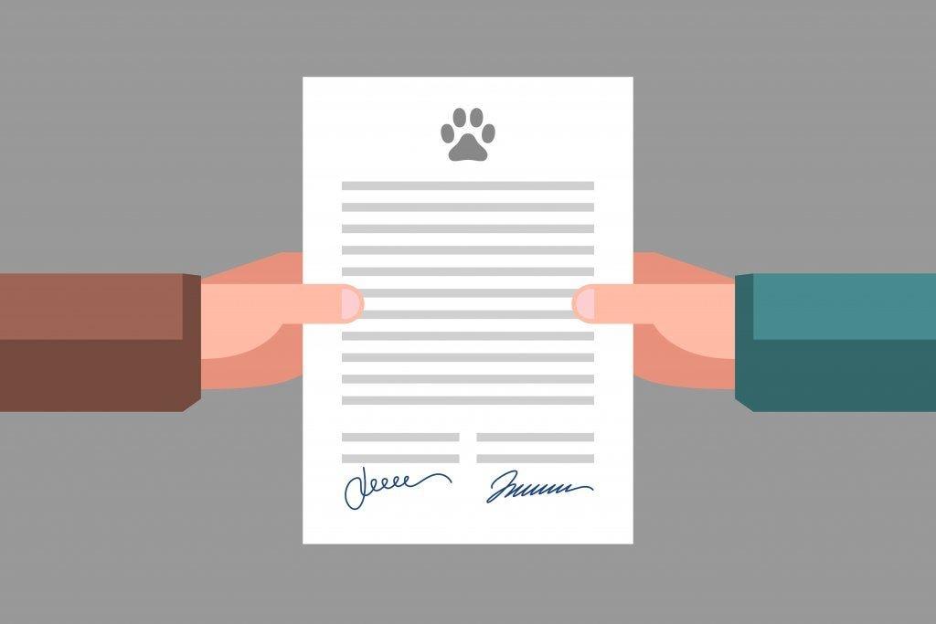 Documentação legal que todos os donos de animais devem ter