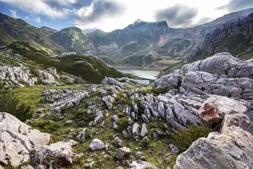 Lugares para ver animais selvagens na Espanha