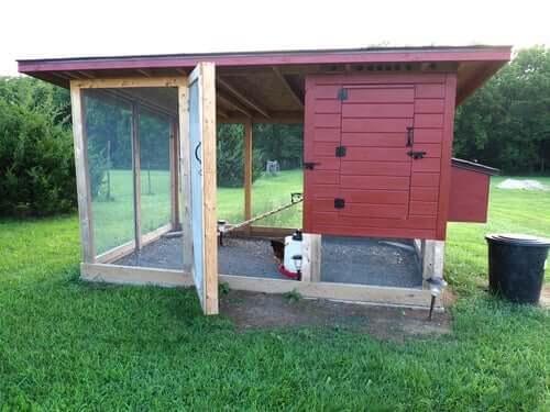 Instalar um galinheiro no jardim