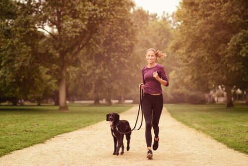 Fazer exercícios com o cachorro