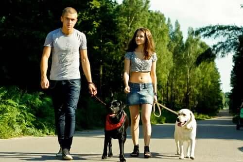 Passear com cachorro no parque