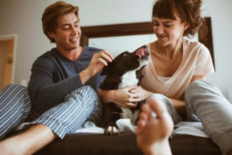Casal se divertindo com cachorro