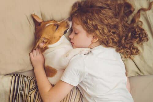 Menina dormindo com cachoro