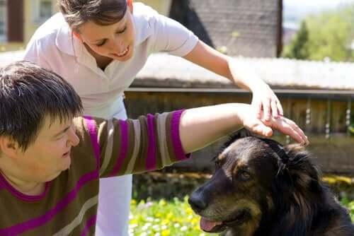 Animais de terapia