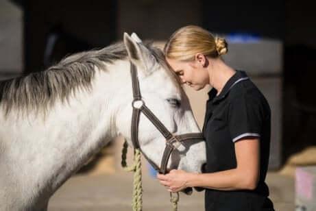 Dona acalmando seu cavalo