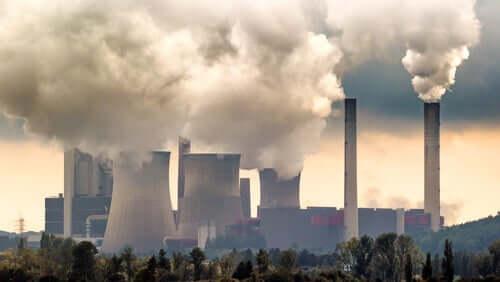 Efeitos da poluição ambiental