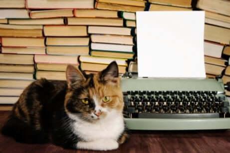 Gato diante de máquina de escrever