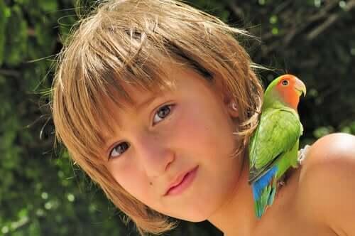 Papagaio no ombro de criança