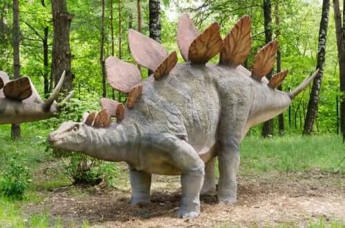 Stegosaurus, um dos dinossauros herbívoros