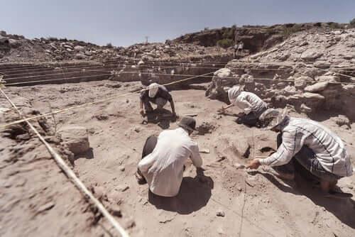 A escavação de cães pré-históricos