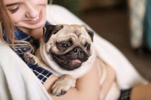 Mulher com seu cachorro pug