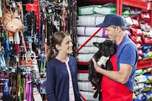 Loja vendendo animais de estimação