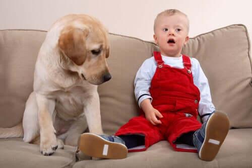 Cachorro e criança com síndrome de Down