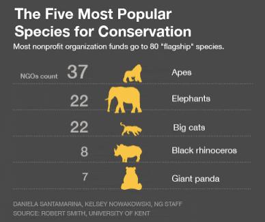 Espécies-bandeira são espécies usadas para conservar a biodiversidade