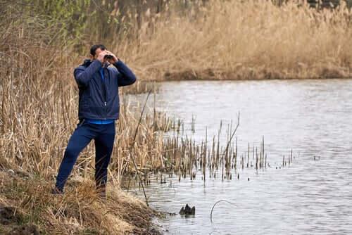 Homem observando aves