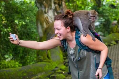O que há por trás das selfies com macacos?
