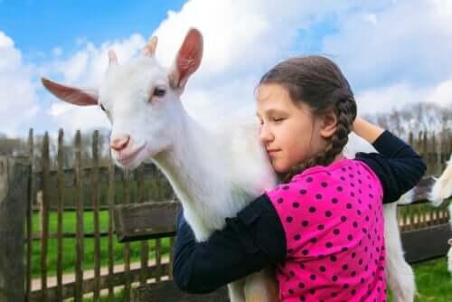Menina abraçando cabra