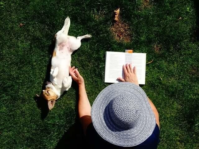 E o homem encontrou o cão, uma obra de Konrad Lorenz