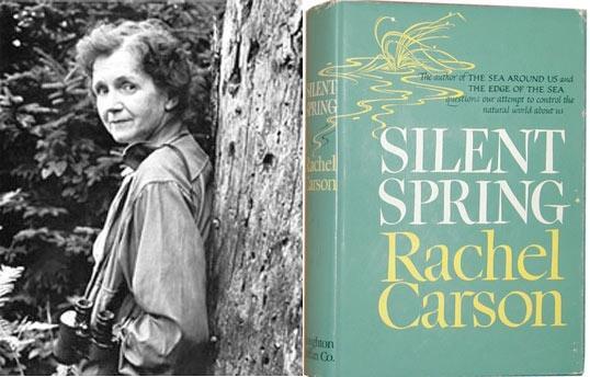 Obra-prima de Rachel Carson