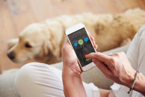 Tecnologia, uma grande aliada da arte canina