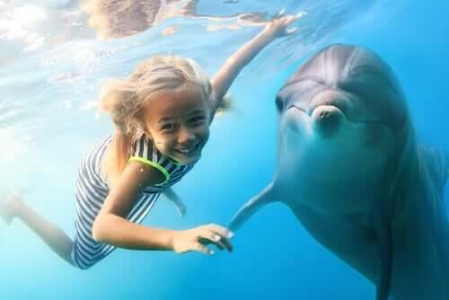 Benefícios da terapia com golfinhos para as crianças