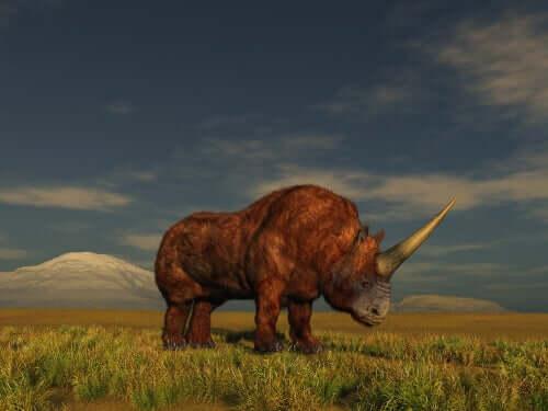 Unicórnio siberiano (ou rinoceronte-de-chifre-grande)