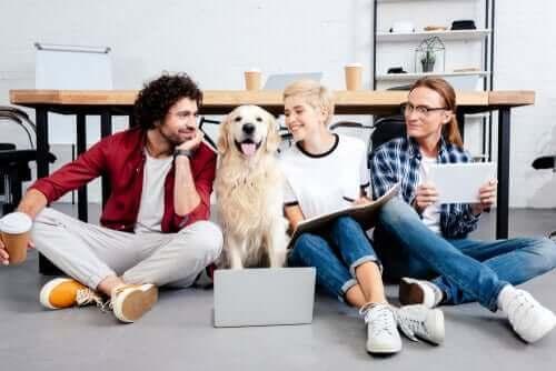 Os animais de estimação no escritório trazem benefícios?
