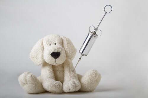 Imunologia veterinária: para evitar e tratar doenças