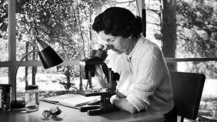 Rachel Carson: história
