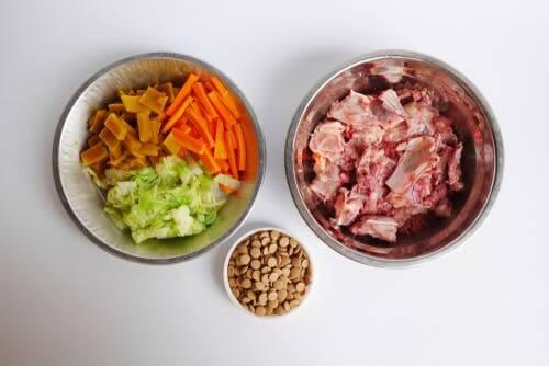 a bi-nutrição para animais de estimação