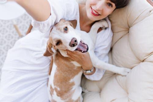 Qual é o cachorro que menos fica doente?
