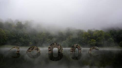 Lendas latino-americanas sobre os animais