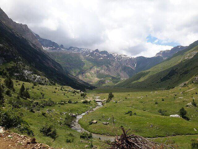 7 parques naturais da Espanha para contemplar a fauna nativa