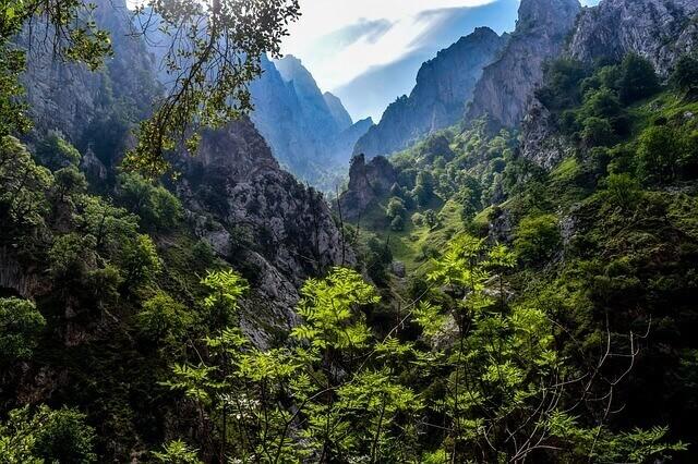 Parques naturais da Espanha: Picos da Europa
