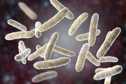 Pneumonia bacteriana