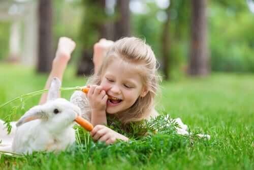 a terapia com coelhos