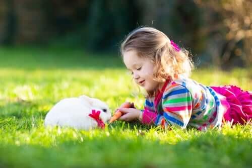 Em que consiste a terapia com coelhos?