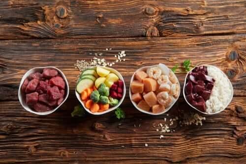 A nutrição pode beneficiar seu animal de estimação?