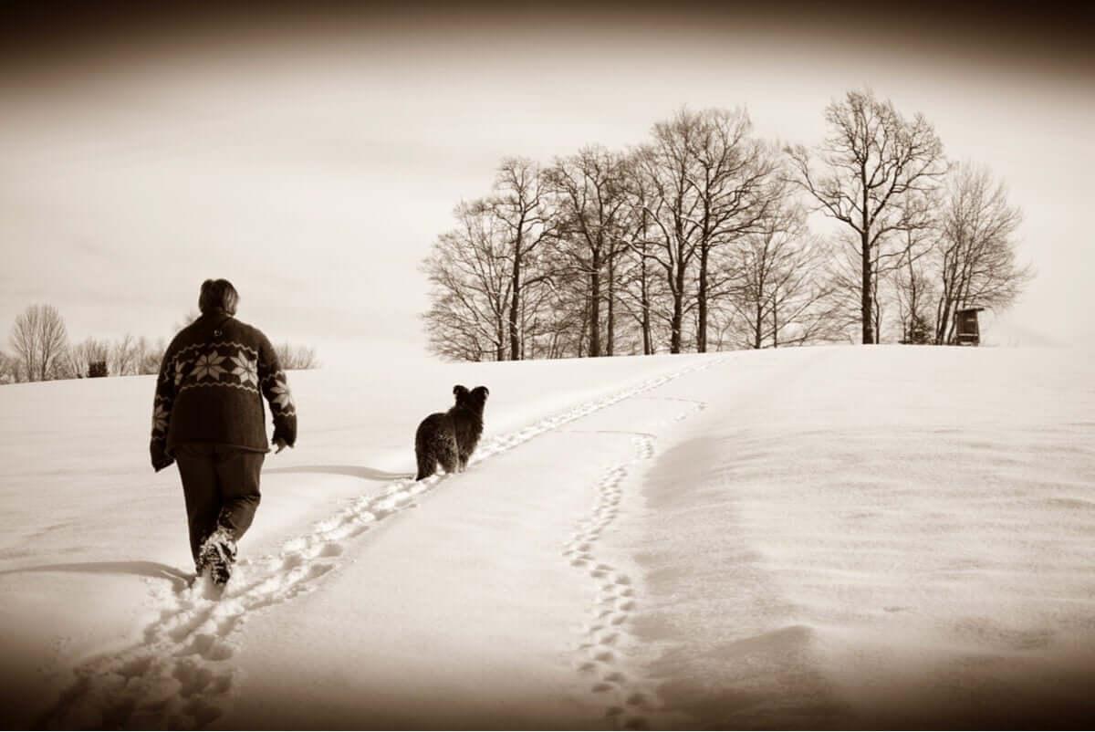 A caminhada diária é um excelente exercício físico