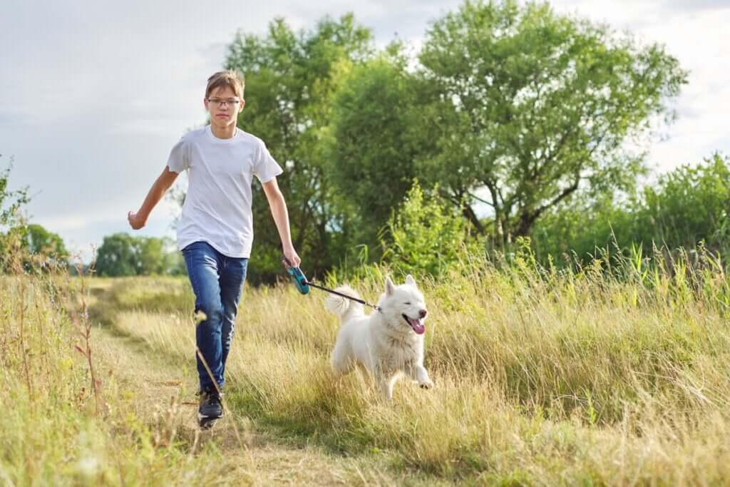 Na Alemanha, será obrigatório passear com os cães duas vezes por dia
