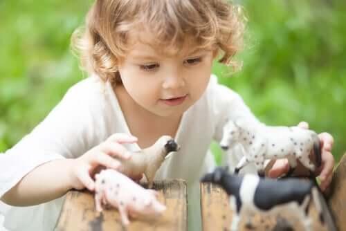 Aprenda sobre o comportamento dos animais