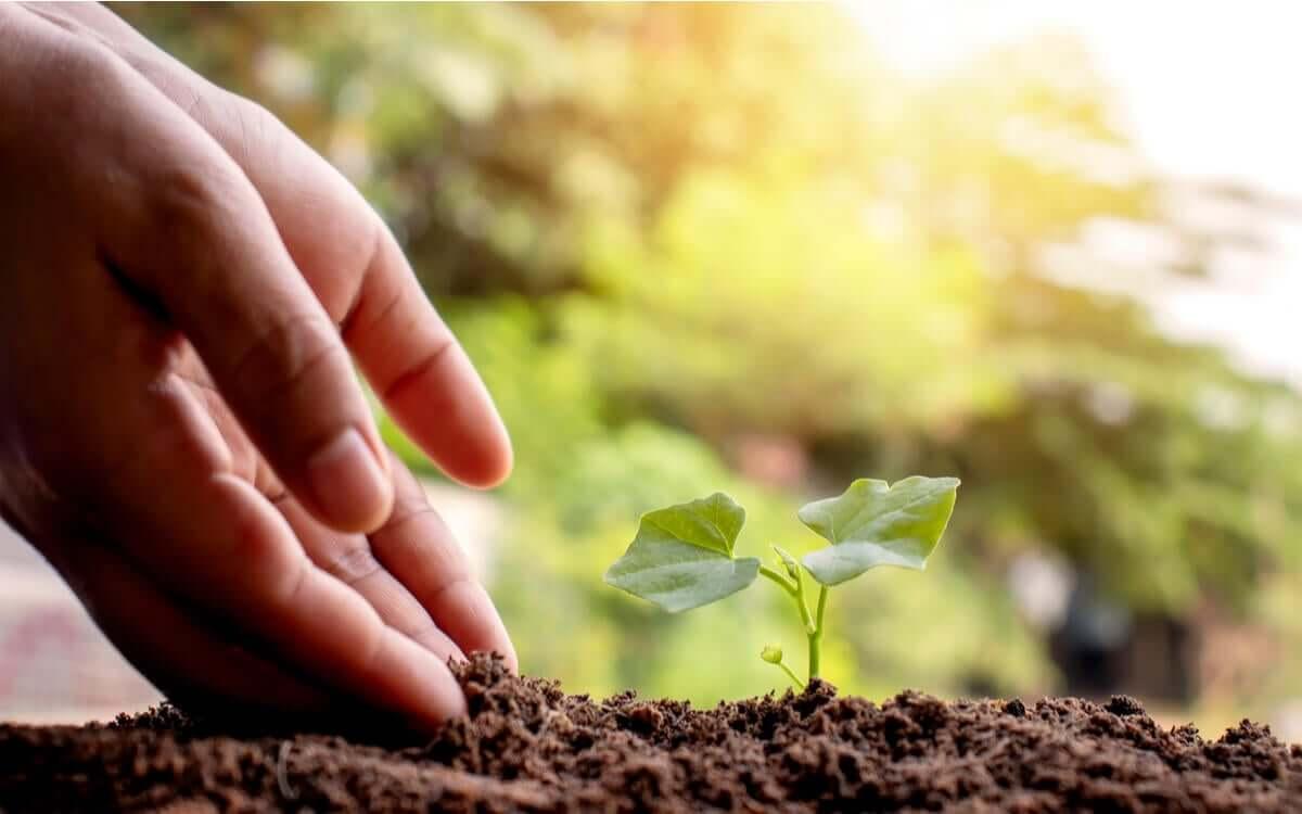 os indicadores de impacto ambiental