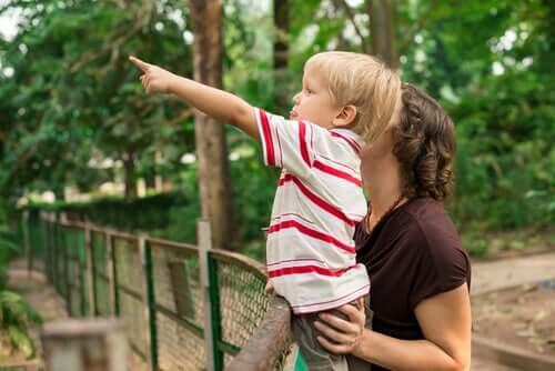 Então, como os zoológicos ajudam a conservar a biodiversidade?
