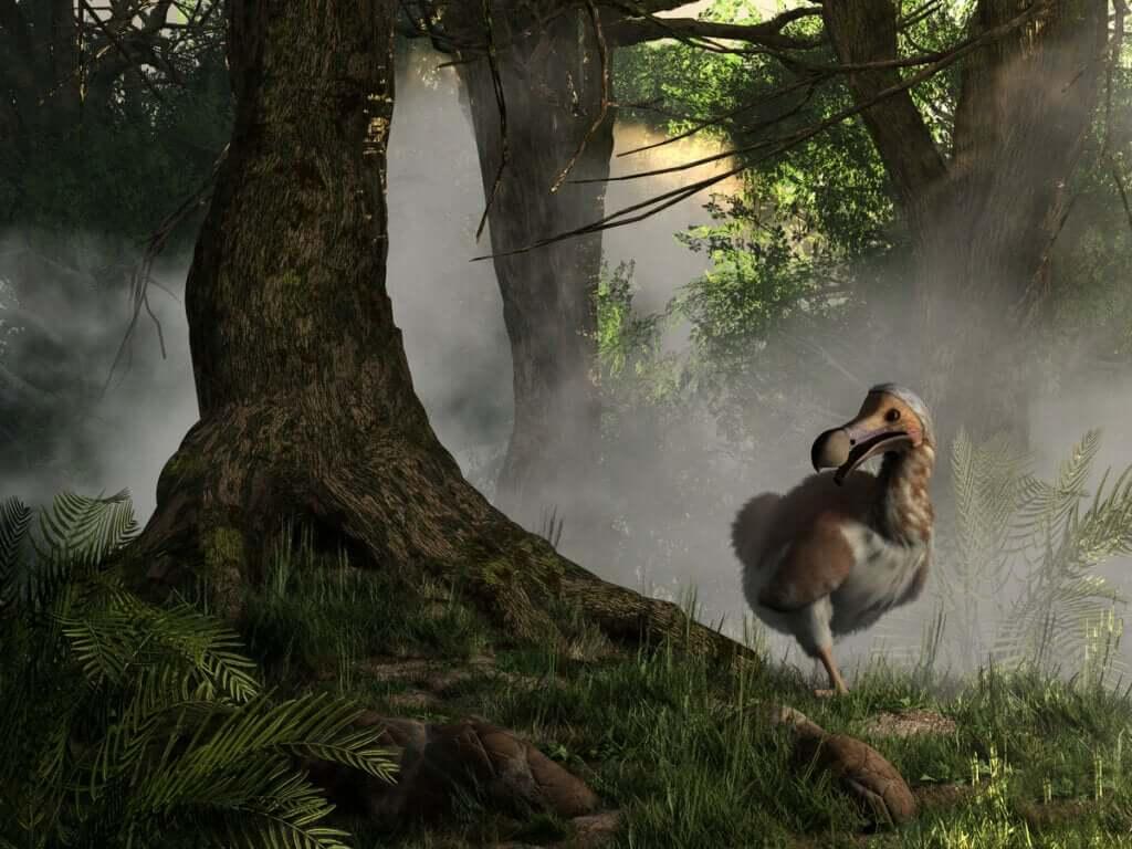 As espécies podem ser recuperadas da extinção?