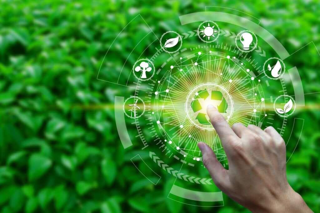 O que é a produtividade em um ecossistema?